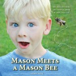 Mason Meets a Mason Bee front cover