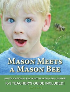 Mason Meets a Mason Bee with K-5 Educator's Guide book cover